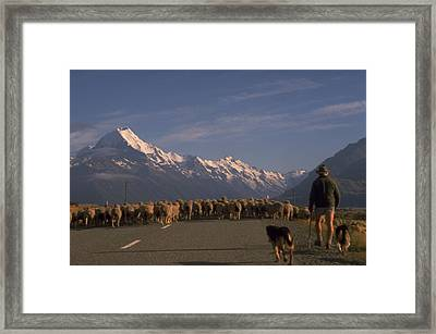 New Zealand Mt Cook Framed Print