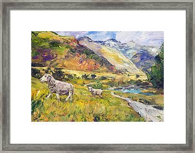 New Zealand Pastoral Framed Print