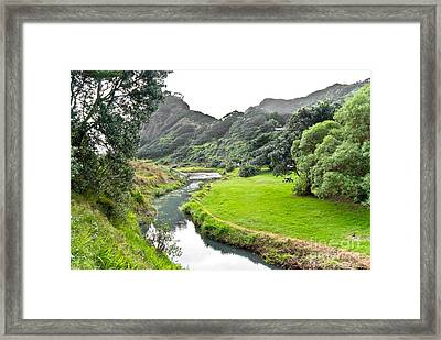 Framed Print featuring the photograph New Zealand Scenery by Yurix Sardinelly