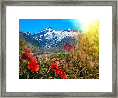 New Zealand Southern Alps Montage Framed Print