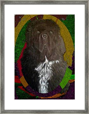 Framed Print featuring the drawing Newfie Colors by Michelle Audas