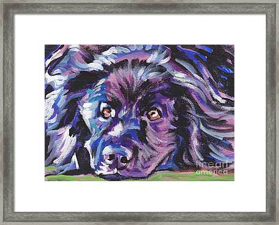 Newfie  Framed Print by Lea S