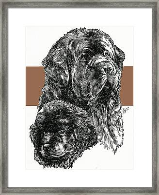 Newfoundland Father And Son Framed Print by Barbara Keith