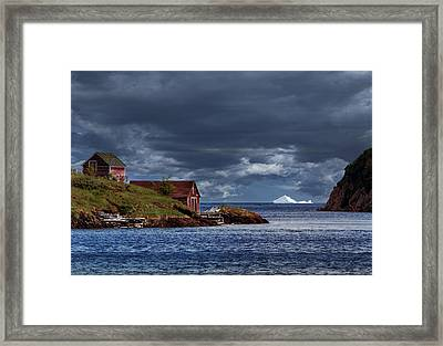 Newfoundland In June Framed Print by Janet Ballard