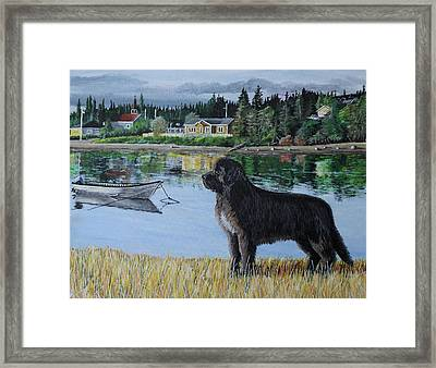 Newfoundland In Labrador Framed Print