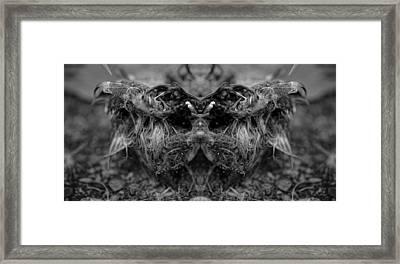 Ngoloko Framed Print by Stuart Gallagher