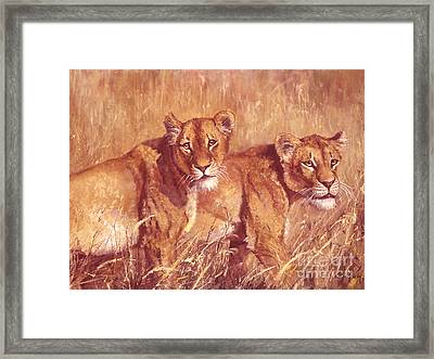 Ngorongoro Lionesses Framed Print by Silvia  Duran