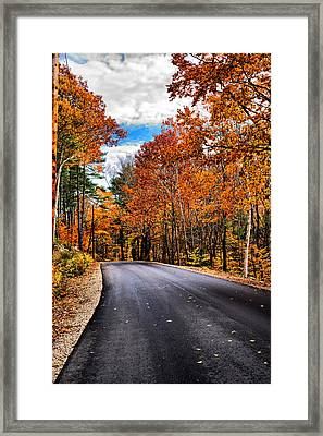 Nh Autumn Road 1 Framed Print