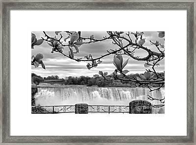 Niagara American Falls Spring Framed Print