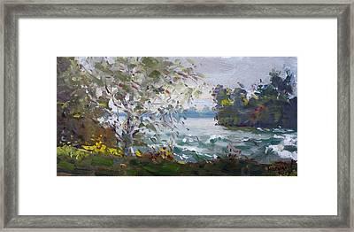 Niagara Falls Park Rapids Framed Print