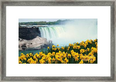 Niagara Falls Spring Flowers And Melting Ice Framed Print