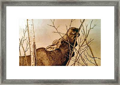 Framed Print featuring the pyrography Nibbling The Willow by Adam Owen