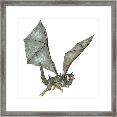 Nice Dragon Framed Print