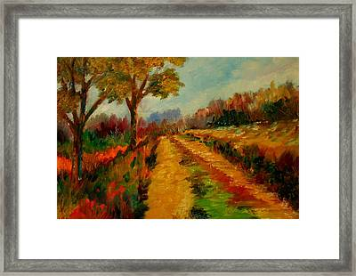 Nice Pathway Framed Print by Constantinos Charalampopoulos