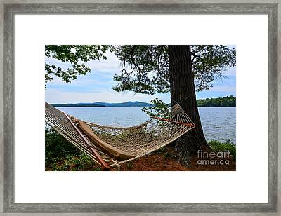 Nice Spot For A Nap Framed Print