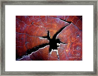 Framed Print featuring the photograph Niche by Stephen Mitchell