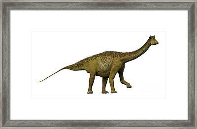 Nigersaurus Side Profile Framed Print by Corey Ford