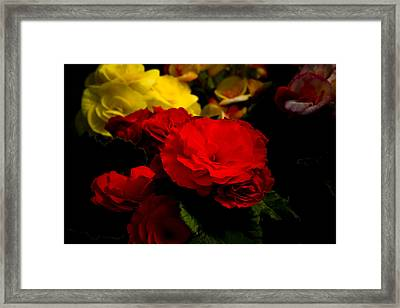 Night Begonias Five Framed Print by John Ater