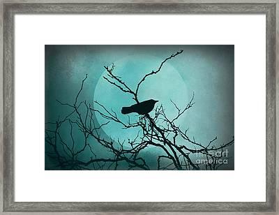 Night Bird Framed Print by Patricia Strand