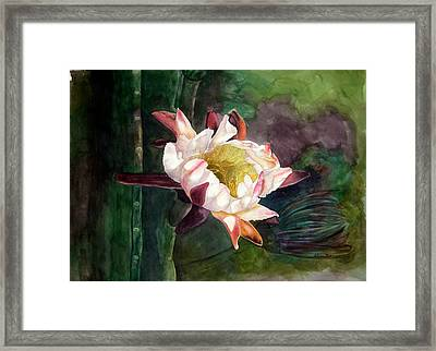 Night Blooming Cereus Framed Print by Sharon Mick