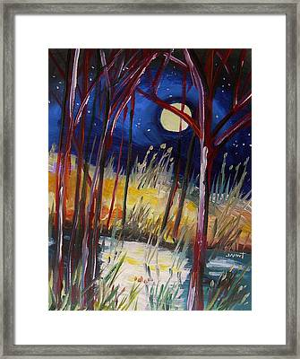 Night Dance Framed Print by John Williams