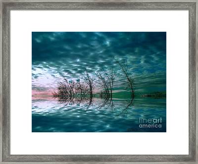 Night Dream Framed Print