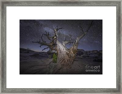 Night Dreamer Framed Print by Marco Crupi