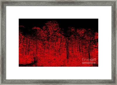 Night Fire Framed Print