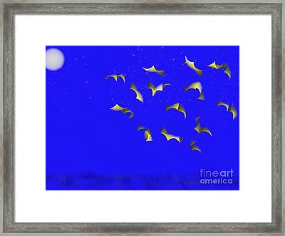 Night Flight Framed Print by Kathie Chicoine