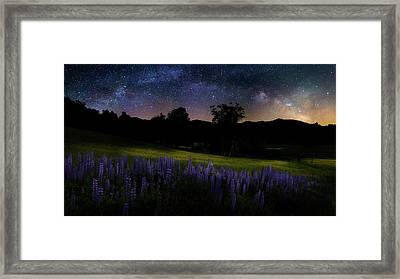 Framed Print featuring the photograph Night Flowers by Bill Wakeley