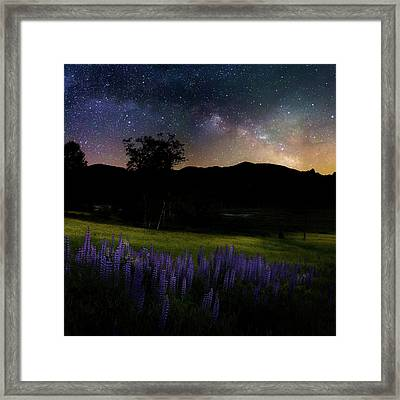Night Flowers Square Framed Print