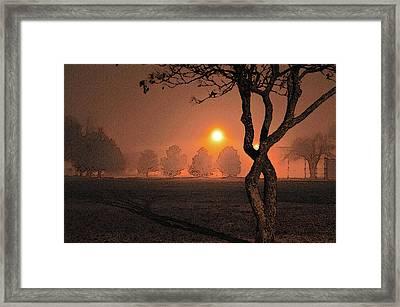 Night Fog Framed Print by Betty LaRue