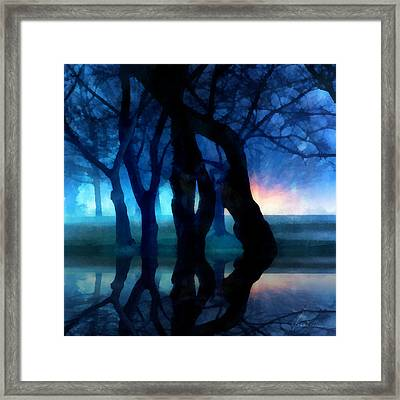 Night Fog In A City Park Framed Print by Francesa Miller