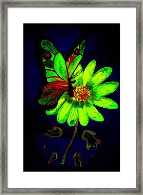 Night Glow Framed Print by Maria Urso