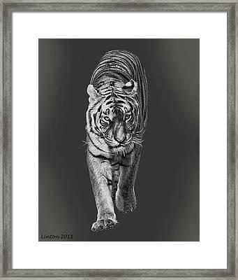 Night Hunter Framed Print by Larry Linton