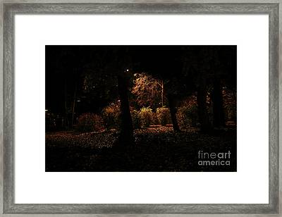 Night In The Park  Framed Print