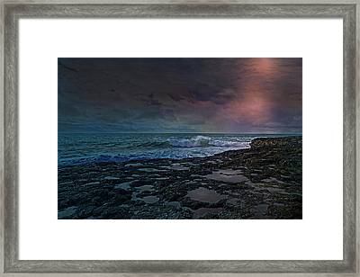 Night Life Framed Print by Betsy Knapp
