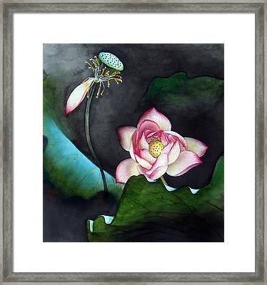 Night Lotus Framed Print by Leaf Moore