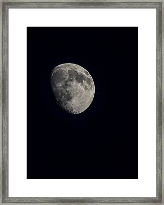 Night Moon Framed Print by Alicia Collins