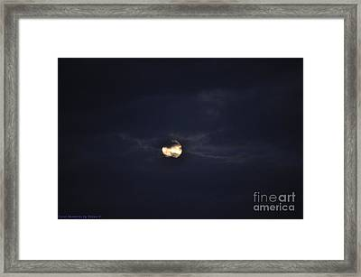 Night Moves 2 Framed Print