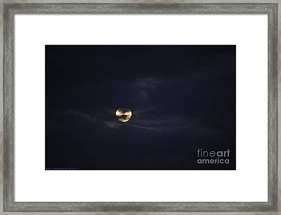 Night Moves 4 Framed Print