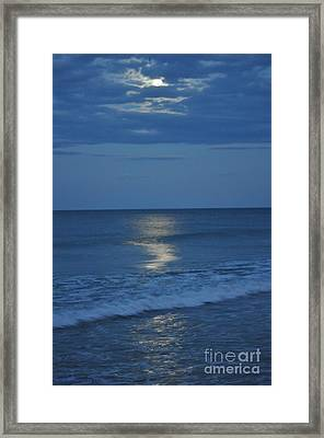 Night Moves 7 Framed Print
