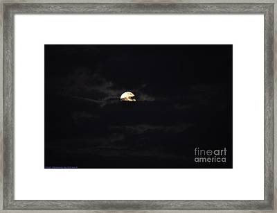 Night Moves 9 Framed Print