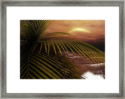 Night Moves Framed Print by Richard Rizzo