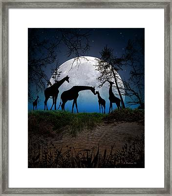 Night Of The Giraffes Framed Print by Brian Wallace
