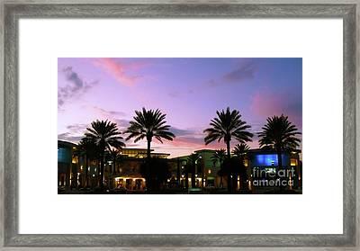 Night On The Town Palm Beach Florida Photo 515 Framed Print