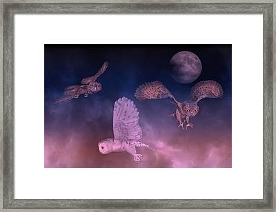 Night Owls Framed Print by Betsy Knapp