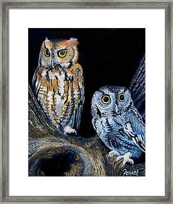 Night Owls Framed Print by Ferrel Cordle