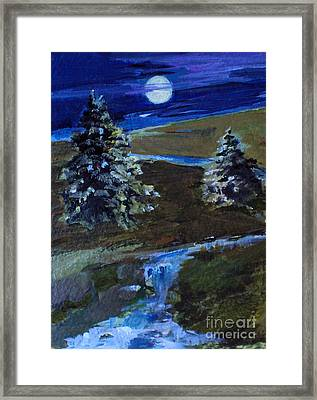 Night Pines Framed Print