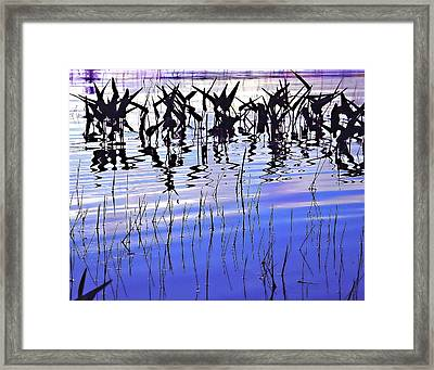 Night Rhythms Framed Print by Lynda Lehmann